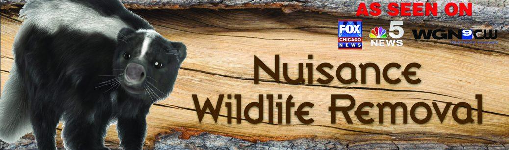 Nuisance 1038x306