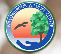 Willowbrook Wildlife Center
