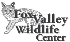 Fox Valley Wildlife Center