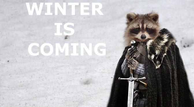 Winter Animal Problems